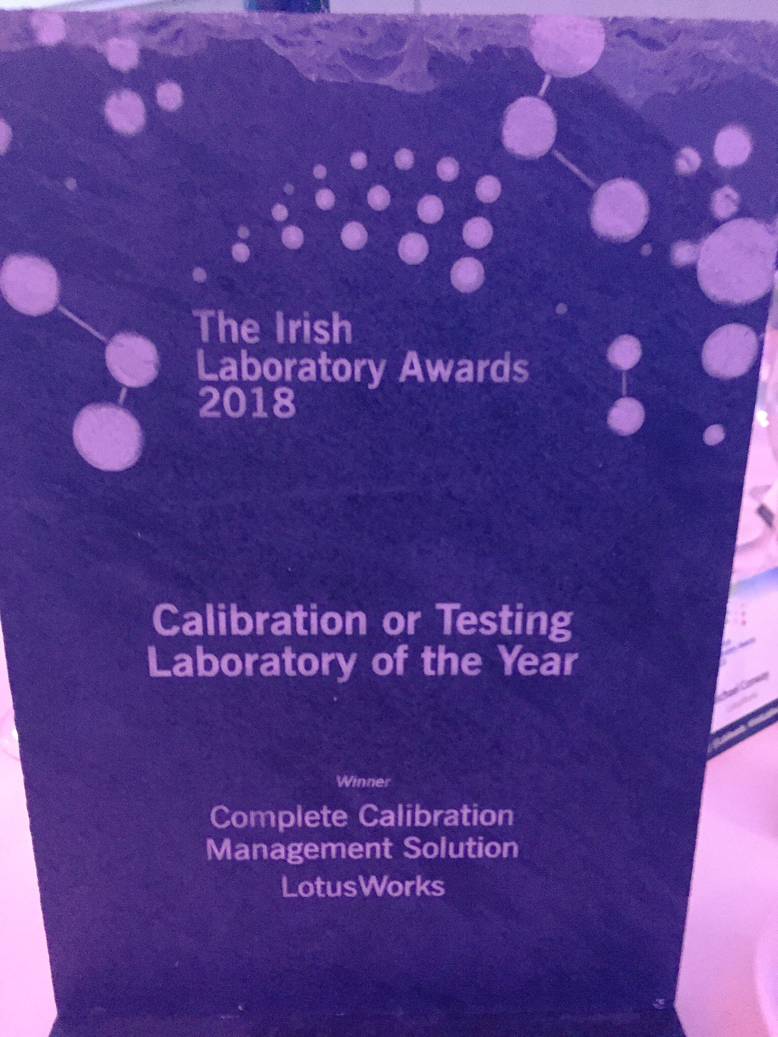 Irish lab awards, winners